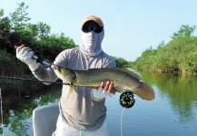 Fly-fishing Pictureof Texas Cichlid - <strong>Rio</strong> Grande Cichlid shared by Semper Fly – Fly dreamers