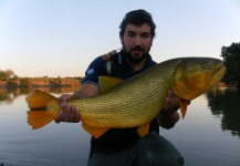 Pablo Nicolás Chapero 's Fly-fishing Imageof a Golden <strong>Dorado</strong>– Fly dreamers