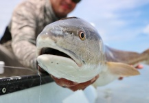 Hai Truong 's Fly-fishing Photo of a Redfish – Fly dreamers