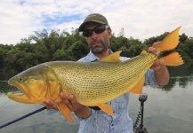 Fly-fishing Photoof Golden <strong>Dorado</strong> shared by Fabian Anastasio – Fly dreamers