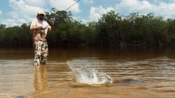 Fly Fishing In Brazil & More by Kid Ocelos