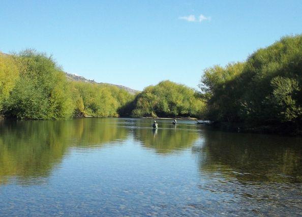 Aguas calmas en el Chimehuin