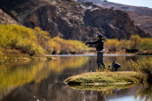Pescando en buena compañia