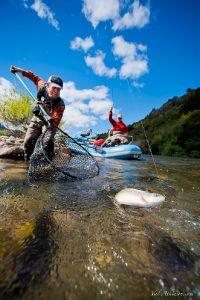 Patagonia Trout Adventures