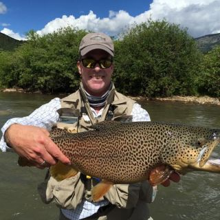 Long Meadow Ranch Brown Trout