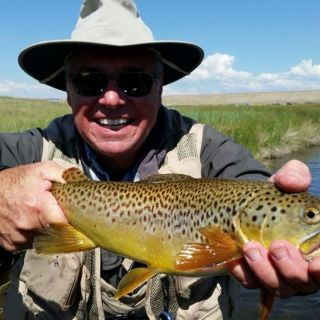 South Park Colorado Brown Trout