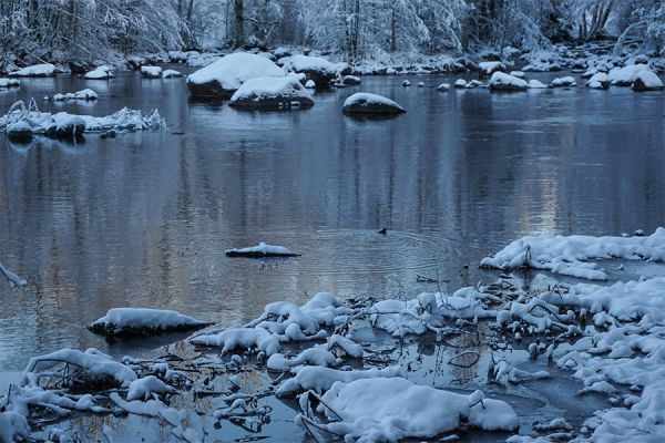 Lasakoski, Kangasniemi, Southern Savonia, Finland