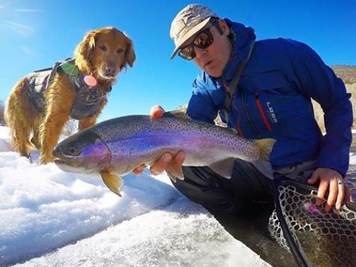 Colorado is a year-round Fly-fishing paradise, winter is no exception.. Now that we can officially call it Winter, it doesn't mean the Trout stop feeding. The locals here in the Vail valley are very savvy when it comes to knowing what gear to use when h...