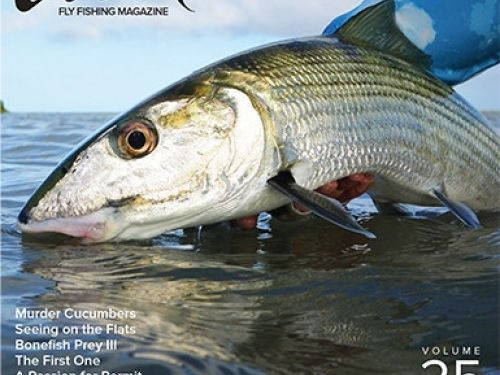 Digital still available. Print is Not Dead: Tail Fly Fishing Magazine is Going to PrintWith an initial release date of September 1, 2012, Tail Fly Fishing Magazine is a bimonthly digital publication of Flyfishbonehead with an exclusive focus...