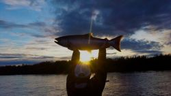 Dream Destinations: Angler's Alibi Alaska