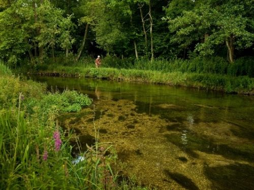 """We want your help to make the ulitmate documentary about the world famous chalkstreams. Help us answer the question: """"What makes the chalkstreams so special and important in the history of fly fishing?"""". The chalkstreams of the south of England may not be..."""