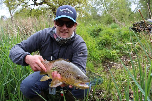 Lovely brownie out of the River Kennet
