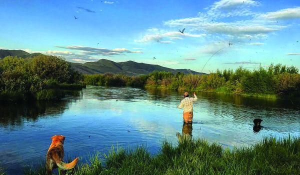 Silver Creek, Ketchum, Idaho, United States