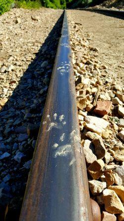 Maken tracks on the tracks