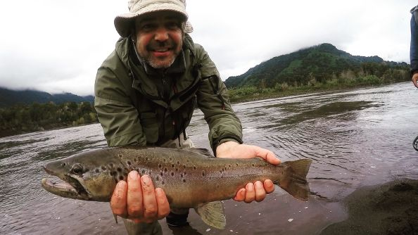 @joseluisravest welcome #fiftyclub     With nice#browntrout (52cm) in #petrohueriver #patagonia #chile  #photooftheday #outdoors #flyfishing #fishingtrip #glamping #simmsfishing #orvisflyfishing #sage