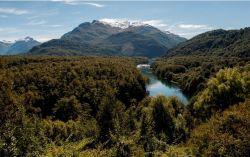 Noticias: El Parque Nacional Los Alerces fue declarado Sitio de Patrimonio Mundial