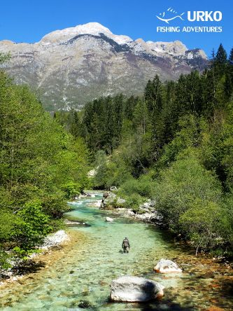 Picturesque small Alpine stream of Koritnica River