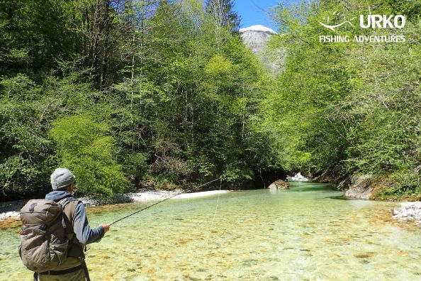 Sight fishing in crystal clear water is highest experience any fly fisherman can get
