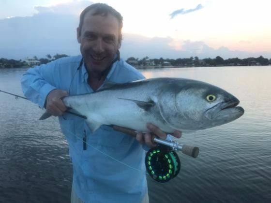 15lbs bluefish on 8wt on popper in Loxahatchee river this spring. ..biggest in FL by heck of a lot...amazing stuff...saw a few pushing 20lbs. ..