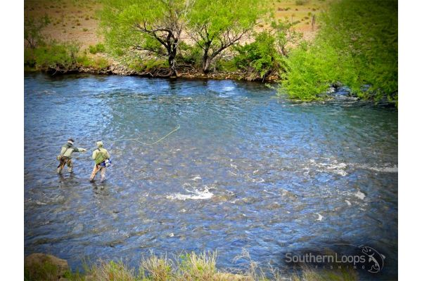 Planning a successful northern Patagonia Argentina fly fishing schedule