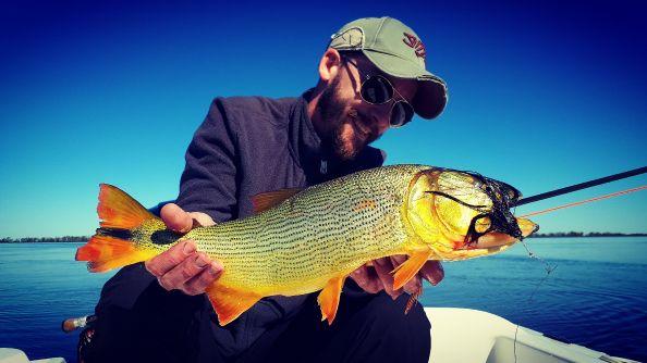 Golden LEO! - Guía: Lucas De Zan - Gualeguay Entre Ríos