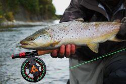 Freestone rivers, streams, spring creeks, stillwater stalking, Wanaka/Queestown, Southland/ Otago, New Zealand