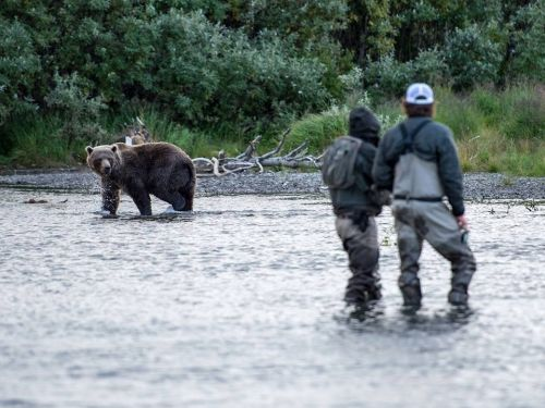 It is North America's most productive wild salmon region. It provides over 14,000 fish-based jobs. Its remote, quiet, clean rivers offer the opportunity for the catch of a lifetime. There are an abundance of wildlife and hunting opportunities. And it's th...