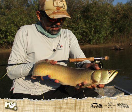 O macaco d'água, ou aruanã é um dos peixes brasileiros que se encaixa perfeitamente na pesca com mosca ao estilo selvagem.  ESSA É A PEGADA!