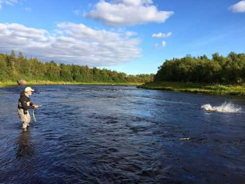 My view on common mistakes when fighting Atlantic salmon.. This fall on the rivers of Kola Peninsula we lost an unusually large number of salmon. Two fish out of three went off the hook. We have already discussed salmon behaviour, but I want to draw your ...