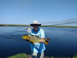 Esteros del Ibera, Corrrientes, Argentina