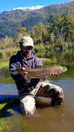 Trucha arco iris del spring creek del Rivadavia, ON Los Alerces, Chubut