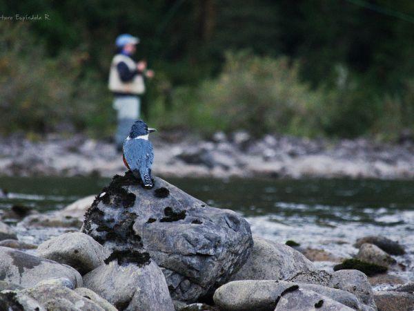 Fishing in Puelo River