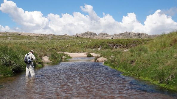 A dos meses para pescar truchas en Córdoba. Los esperamos www.pescaserrana.com.ar - 3544 415188