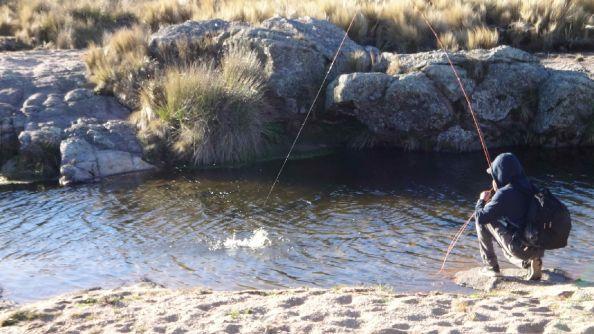 A dos meses para pescar truchas en Córdoba. Los esperamos www.pescaserrana.com.ar - contactateos: 3544 415188