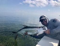 Gulf of Mexico, Cudjoe Key, Florida Keys, United States