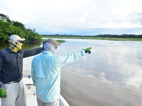 Jungle Tarpon - Costa Rica