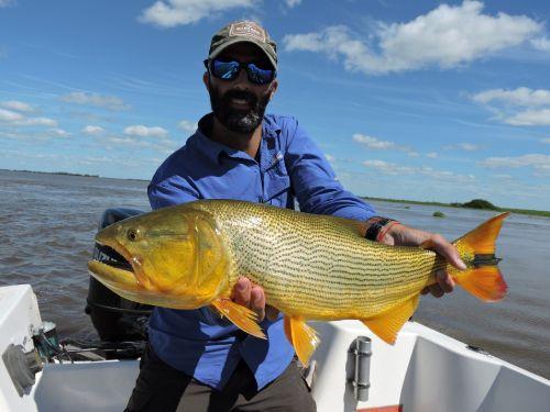 Excursión de pesca realizada los días 19 y 20 de enero de este año en aguas del gran río Pavón.. El pasado fin de semana, pusimos proa al noreste y partimos, con mis grandes amigos y compañeros de pesca Ariel y Álvaro, en busca de nuevas aguas para...