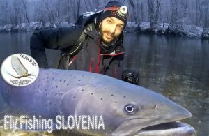 Fauna Fly Fishing Bled, Slovenia