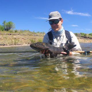 Sightfishing opportunities.
