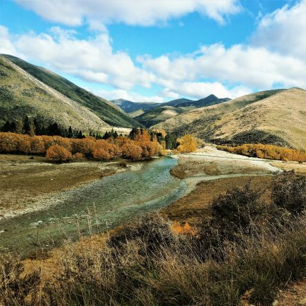 Autumn (March - April) brings cooler days and trout starting to prepare for spawning. The rivers in New Zealand close over the winter months ( May to September) to allow the trout to spawn in peace. The fishery is totally sustained by a wild trout.