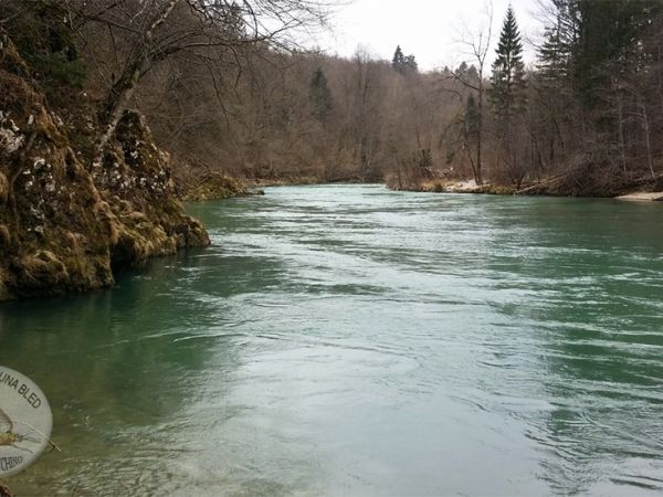 Slovenia opened 2019 Fly Fishing