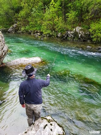 In pursuit for a marble trout