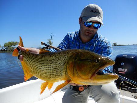 Ferreyrafishing