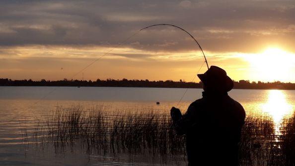 situacion de pesca