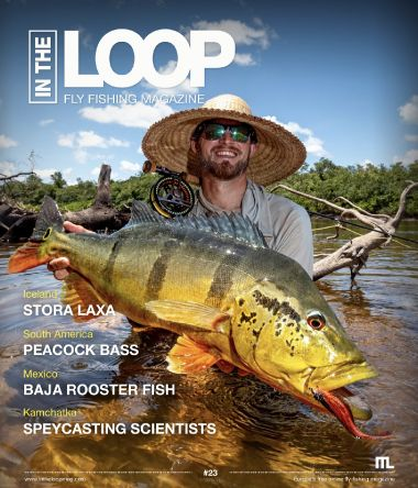 Issue 23 of In the Loop Magazine is now online. Read it here: https://issuu.com/intheloopmagazine/docs/in_the_loop_mag_no23