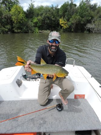 GD from Rio Negro River! Beautiful colors!