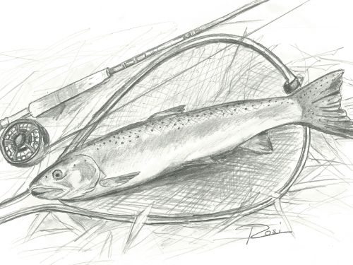 I shared this story once before, several years ago. I've decided to share it again, as an excerpt from my book, Fly Fishing the Troutless River. The book is now available as both hardback and e-book ($7.99). It can be found at major online retailers or fr...