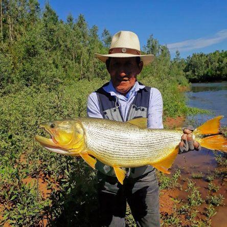 Fly fishing Juramento 2019