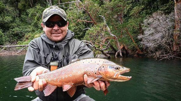 Fifty Club Brown Trout (57cm) Congrats Tito Romero Matapiojo Lodge
