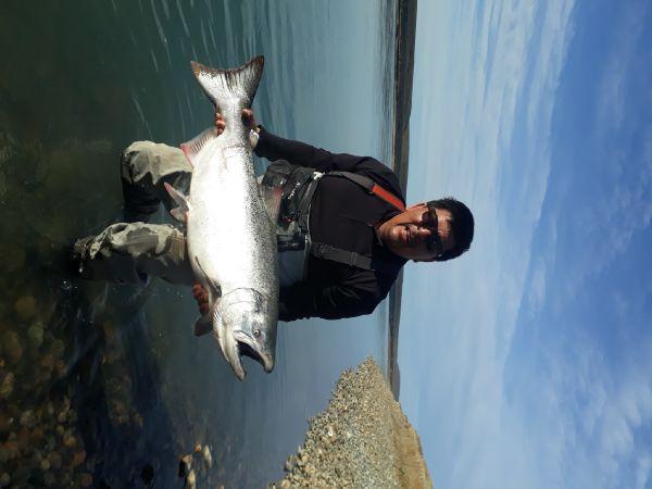 Chinook en su Ingreso al Rio Santa Cruz, Patagonia Argentina